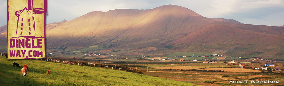 Brandon Mountain from Feohanagh, County Kerry